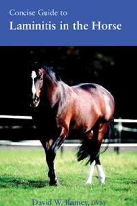 Concise Guide to Laminitis in the Horse