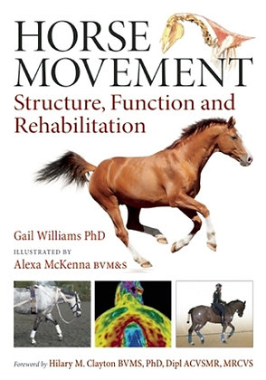 Horse Movement Structure, Function and Rehabilitation