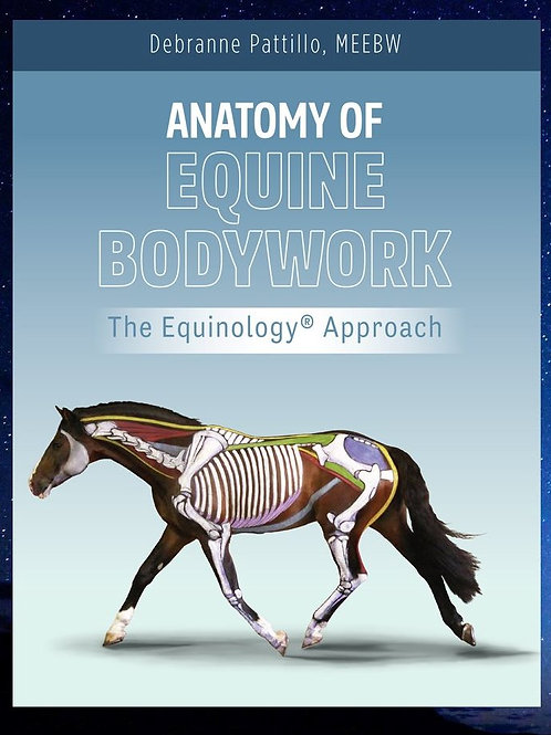 Anatomy of Equine Bodywork - The Equinology Approach