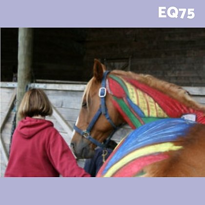 EQ75: Equinology® Equine Body Work for Owners & Trainers