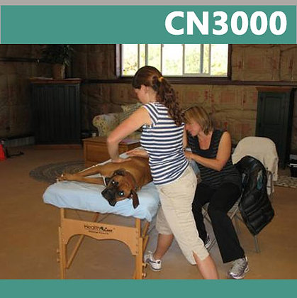 CN3000: Caninology® Canine Body Worker Certification Course