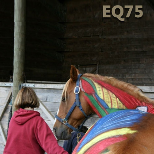 EQ75 - Equine Massage & Bodywork for Owners and Trainers