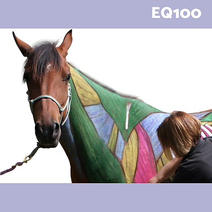 EQ100: Equinology® Equine Body Work Certification Course