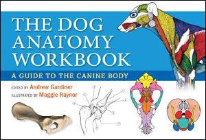 Dog Anatomy Workbook