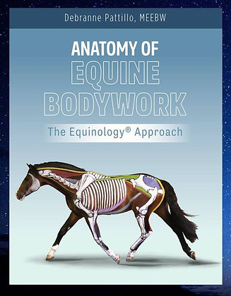 Anatomy of Equine Bodywork: The Equinology® Approach