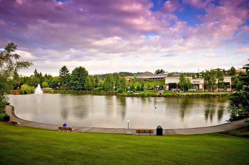 Murrayhill Pond, Murray Scholls