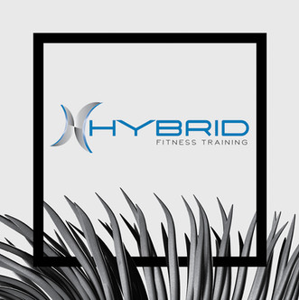 Hybrid Fitness Training
