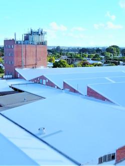 New roofing 3.jpg