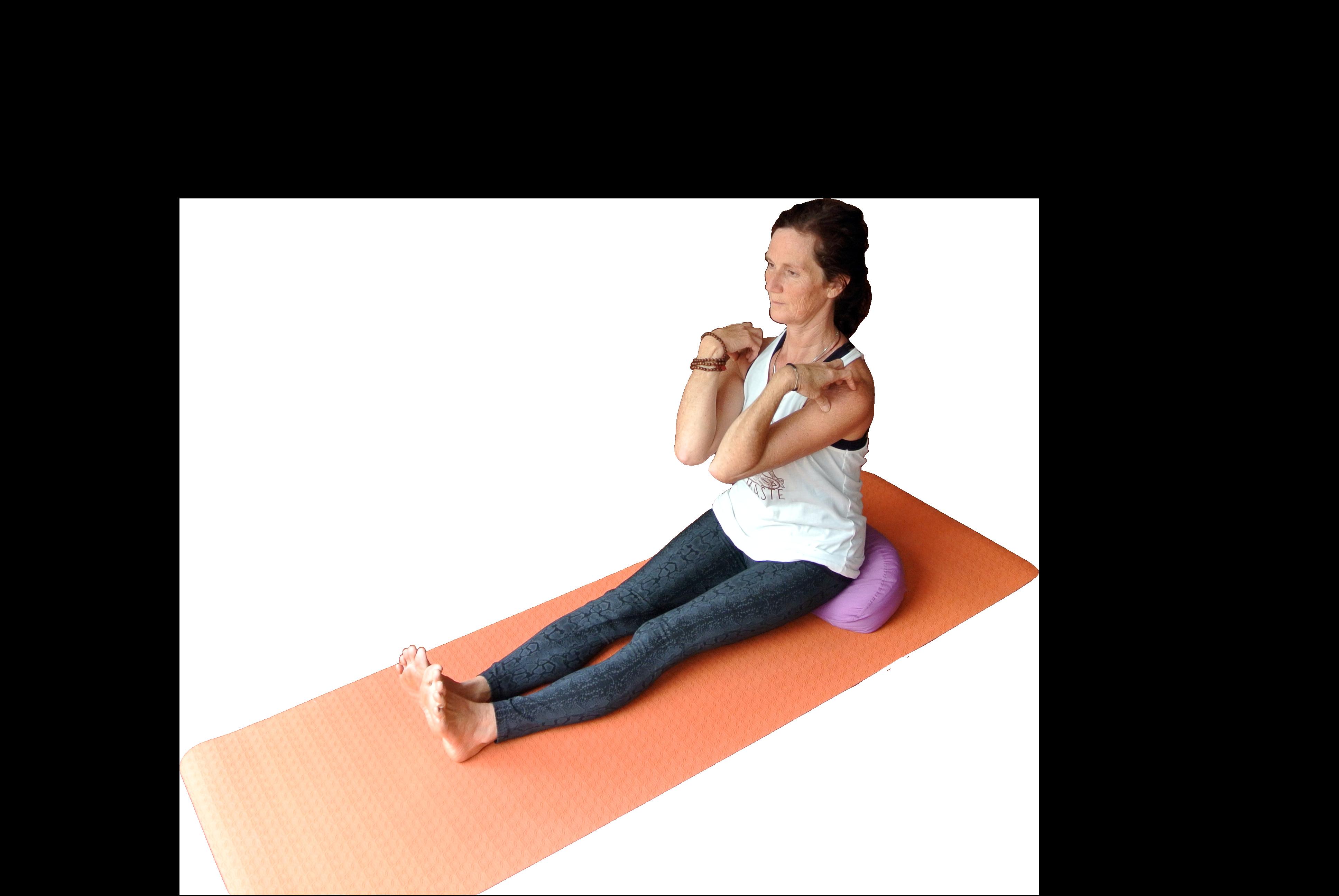 Beginners Hatha Yoga