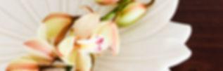 retreat, logo, wedding, clarence valley wedding, wedding venue, grafton stays, wellness retreat, workshop retreat, crystal pool, health retreat, wellbeing, yoga class, yoga workshop, hens weekend, secluded accommodation, accommodation clarence valley