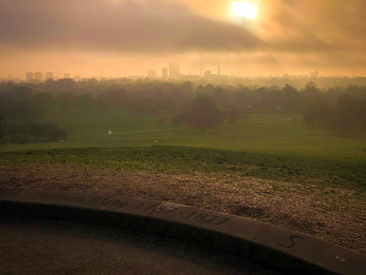 Euroflections Episode 1 | Hyde Park