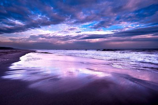 Gift of the Ocean