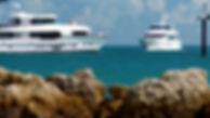 Horizon Yachts copy.jpg