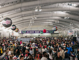 Everything Thing You Need To Know About Sneaker Con Dallas