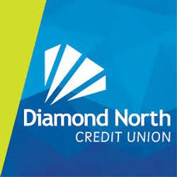 diamond north logo