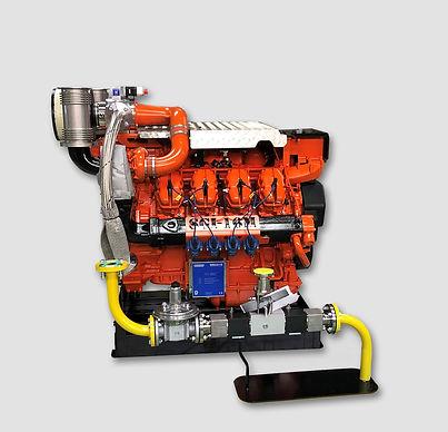 Newest SGI-16M plug & play for ESD or Gas Safe machinery
