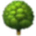 deciduous-tree.png
