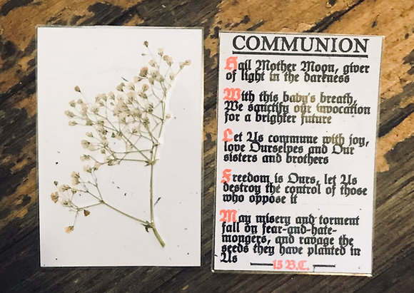 Anasazi/Survival Communion Card