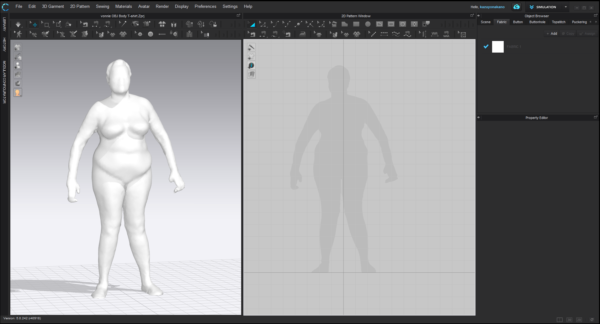 scanned body loaded 3d window