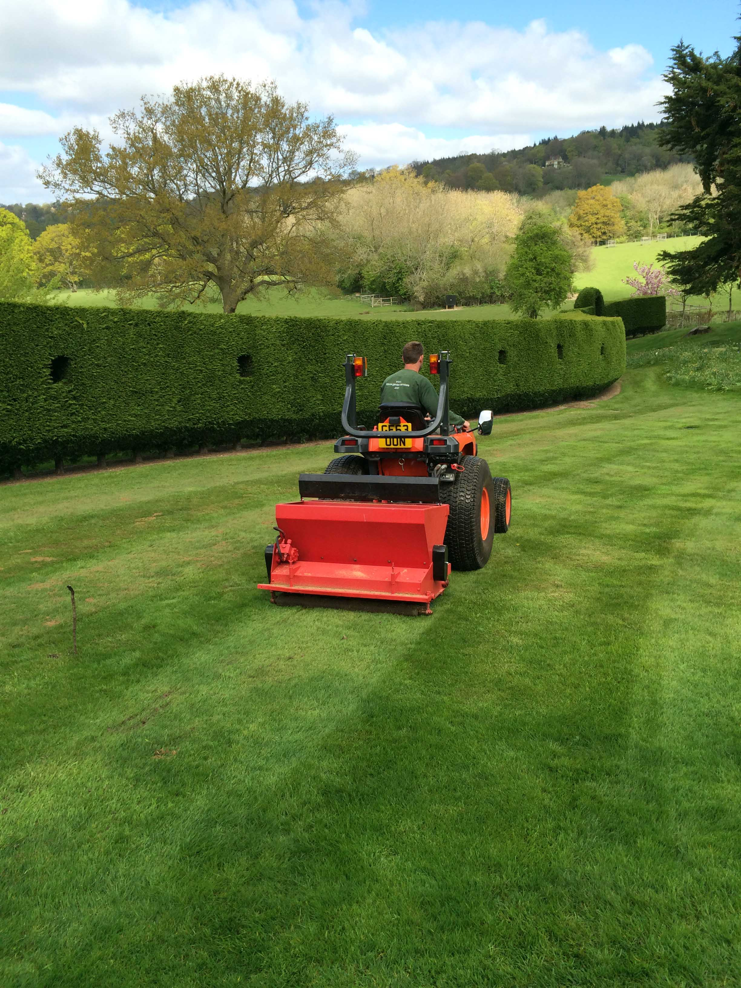 broad leaf ground maintenance 18.JPG