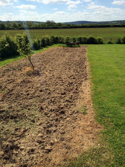 broad leaf ground maintenance 36.JPG