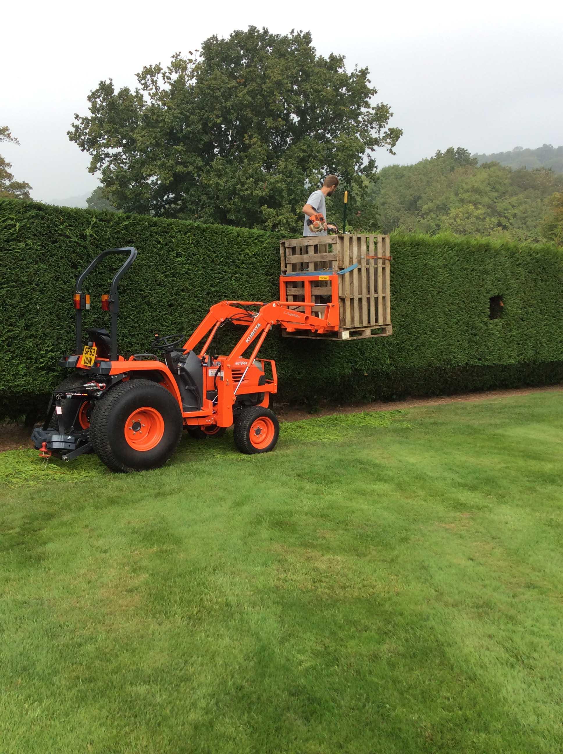 broad leaf ground maintenance 1.JPG