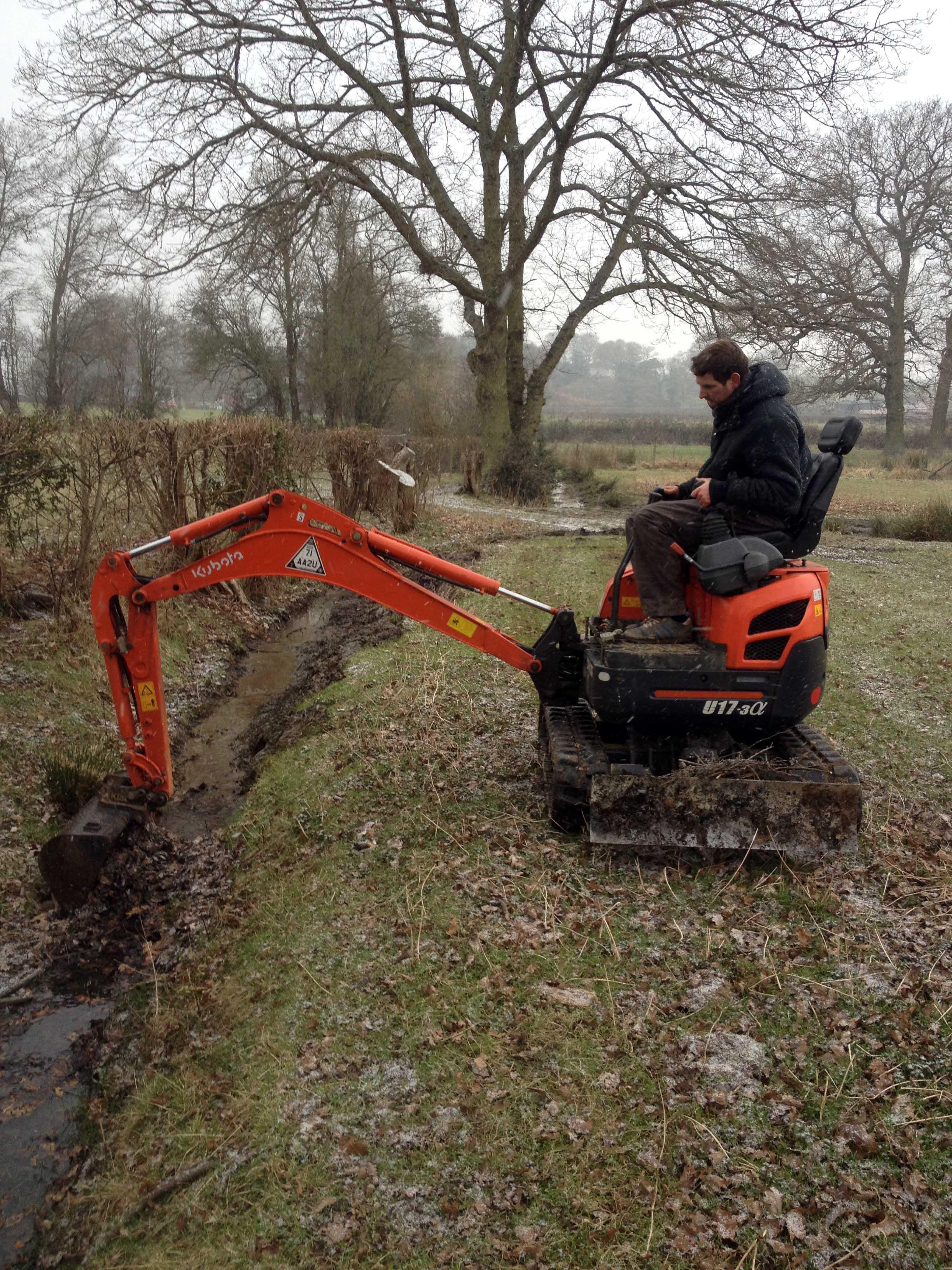 broad leaf ground maintenance  6.JPG