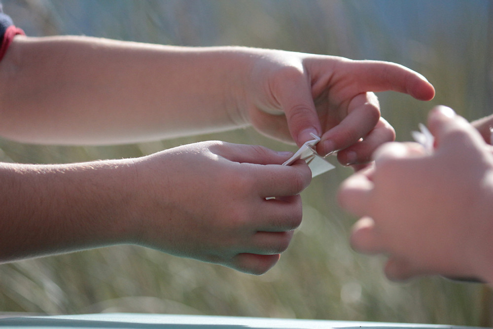 An origami workshop was done with children on the spot where the Esparto grass grew wild.