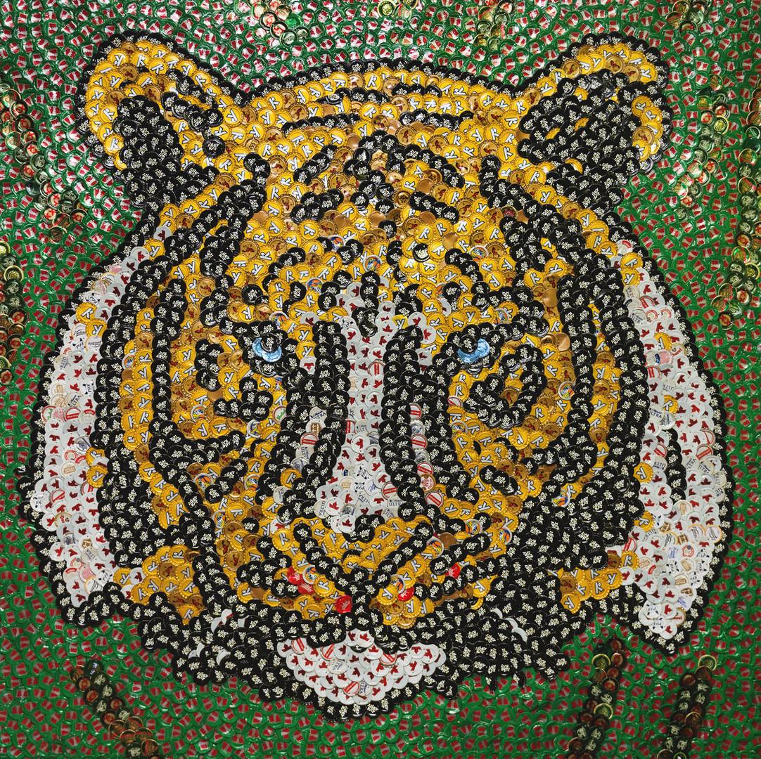 JAM-Tiger-0001.jpg