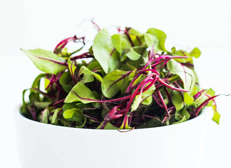 Tender Beetroots with Greens