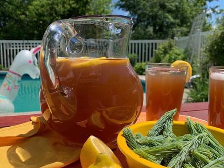 Spruce Tea Recipe!