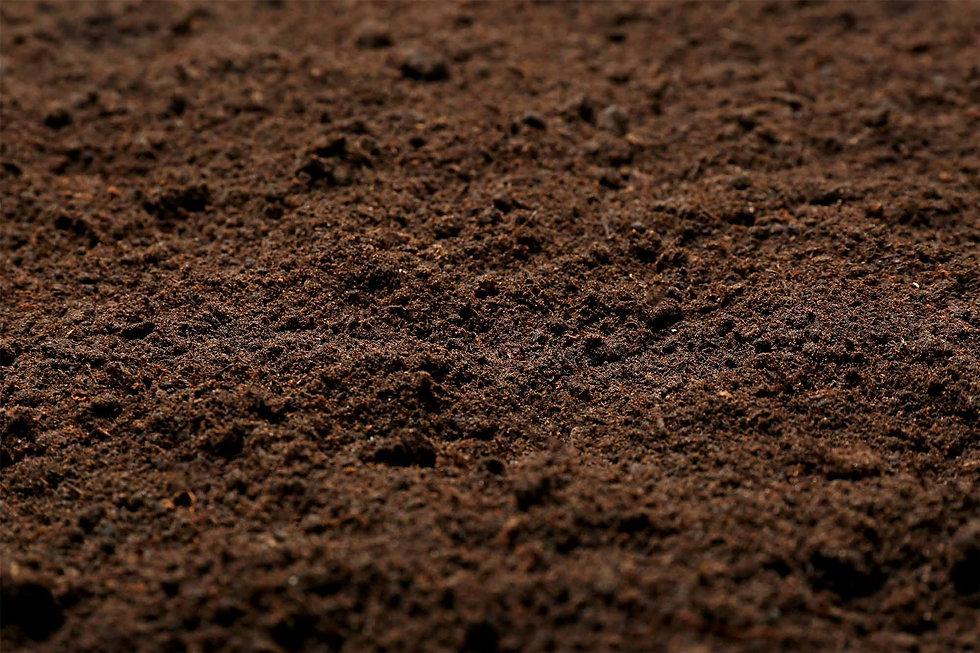 soilmatters.jpg
