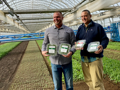 "Local ""Smart Farm"" Goes International"