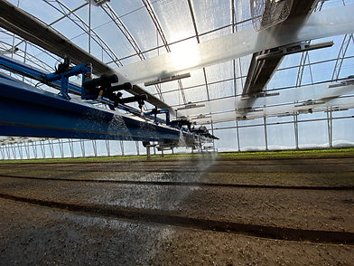 Gantry Watering2.png