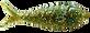 zielono czarny UV.png