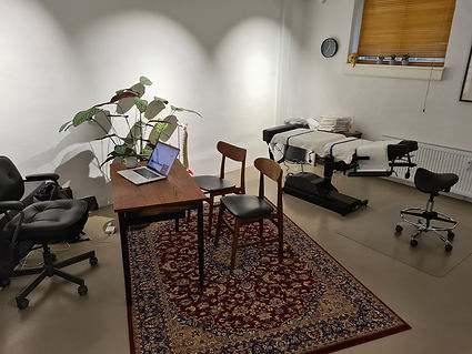 praksis osteopati treatment room
