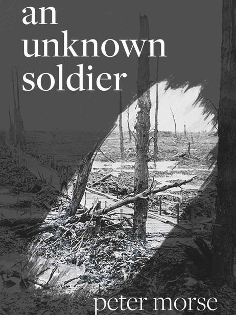 An Unknown Soldier
