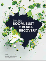 Brazil: Boom, Bust and the Road to Recovery