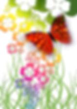 butterfly-65053_960_720.jpg