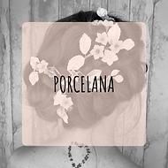 artesania de porcelana (1).png