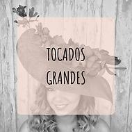 TOCADOS GRANDES.png