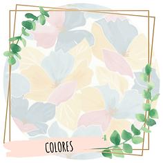 Complemnetos por colores