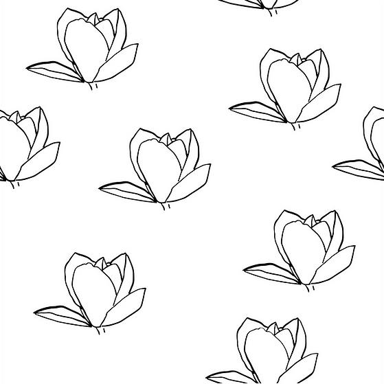 magnolia-732332_1280.png