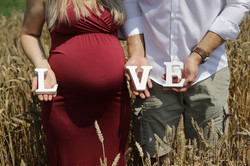 in_papilio_pregnancy_001_web