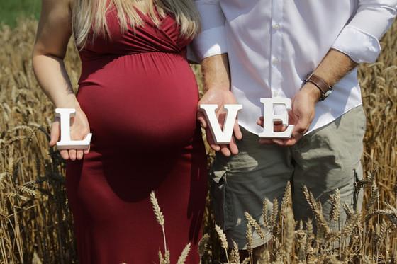 in_papilio_pregnancy_001_web.jpg
