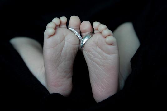 in_papilio_newborn_001_web.jpg