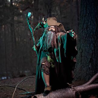 Radagast the Brown Wizard
