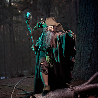 Radagast the Brown Wizard