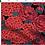 Thumbnail: Bandeau cheveux réversible hortensia et uni noir