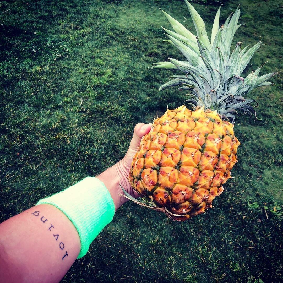 Pinapple Fit.jpg